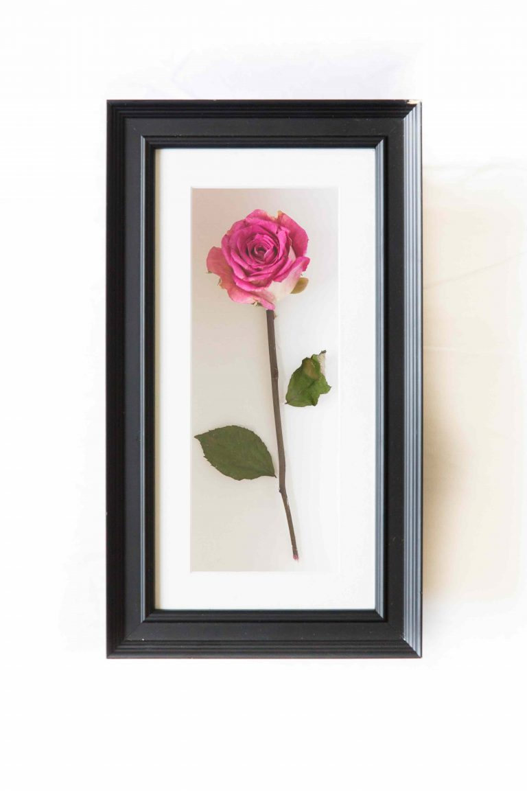 wedding flower preservation rose frame